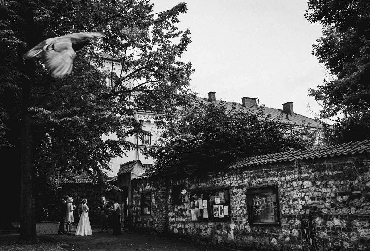 ślub w kościele piotra i pawła