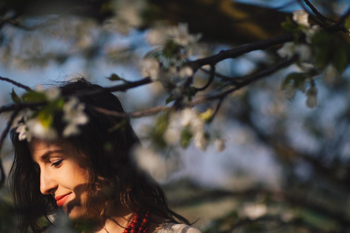 plener w wiśniowym sadzie