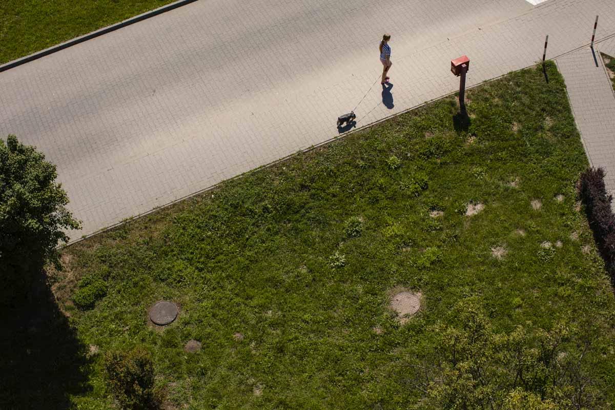 Zielone wzgórze Koniusza