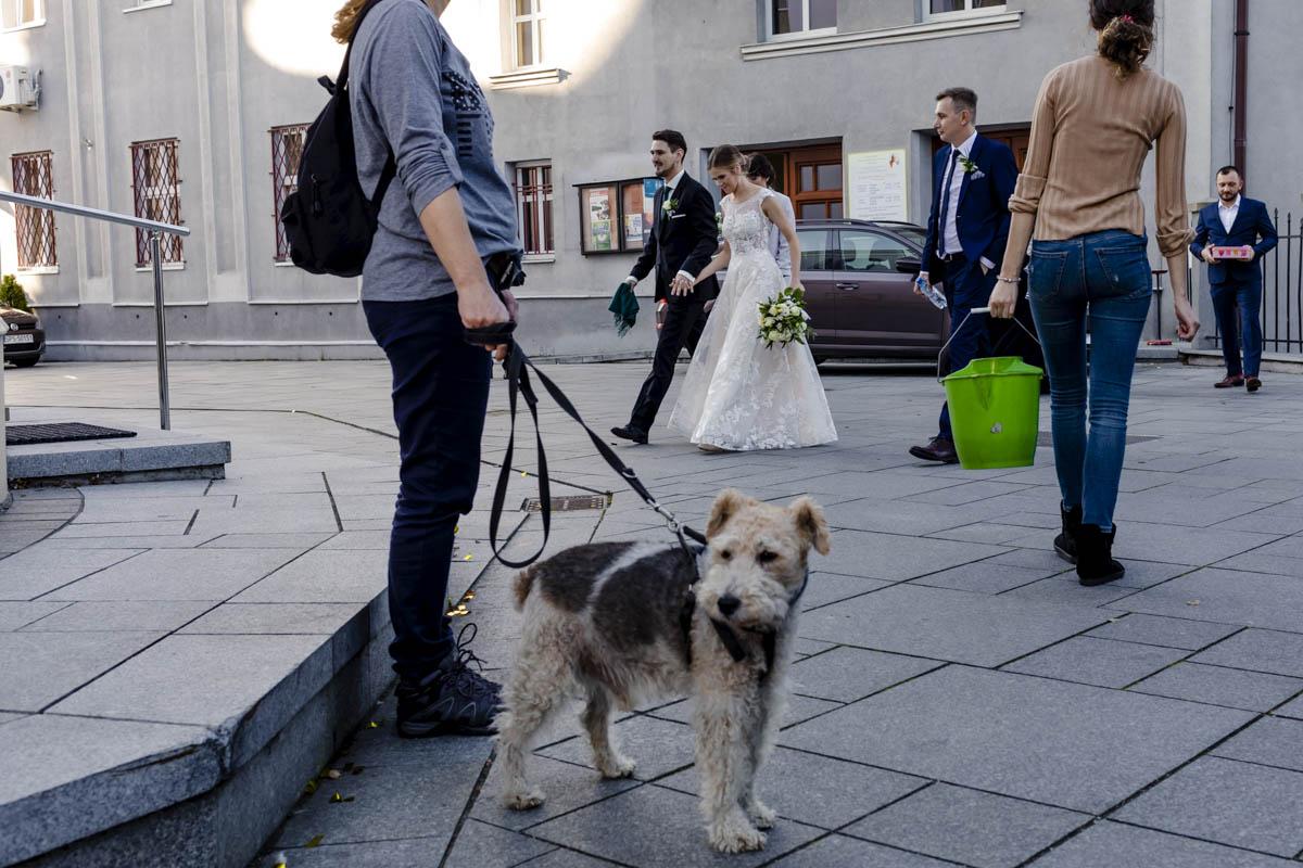 Fotografia ślubna Inwałd